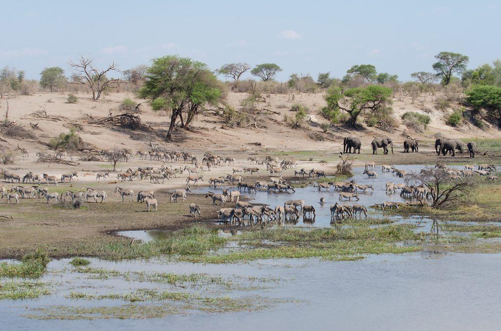 Makgadikgadi National Park