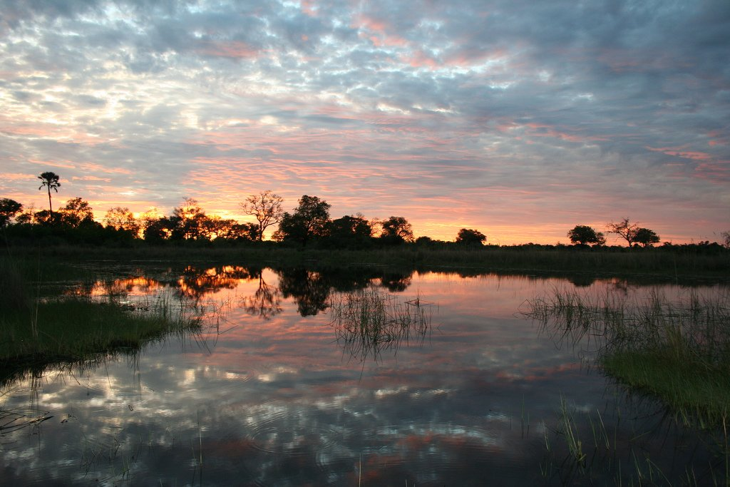 Sunset Okavango