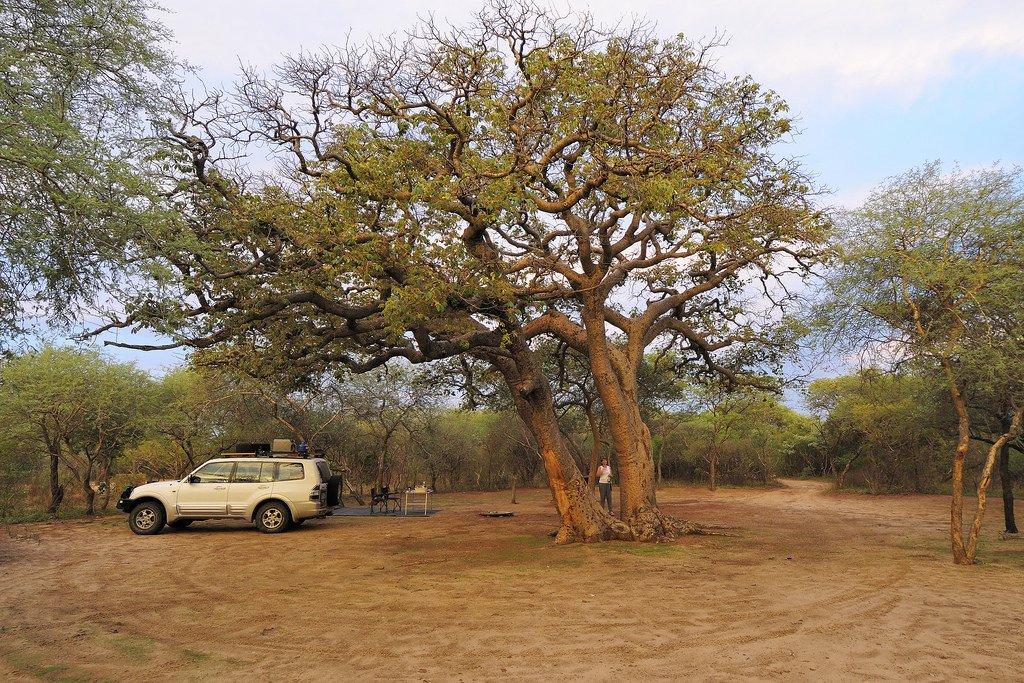 Khama Rhino Sanctuary Lodge