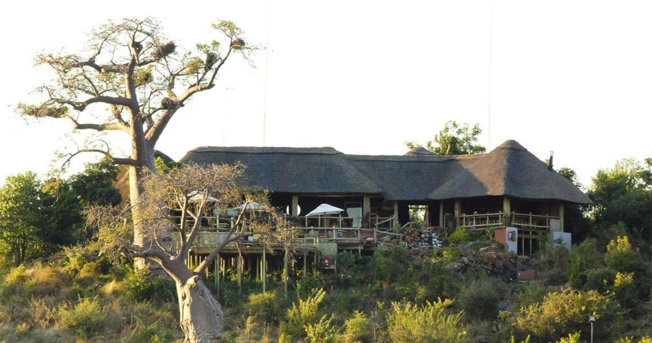 Chobe forest reserve