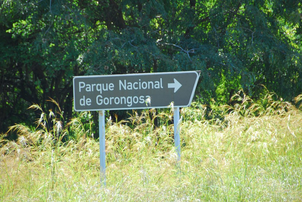 Parc National de Gorongosa