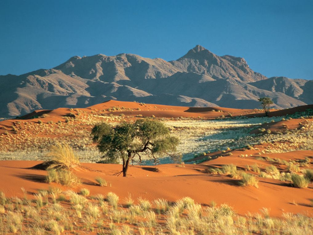 paysage dunes lodge