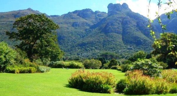 Cape town et safaris au kr ger en autotour for Jardin kirstenbosch
