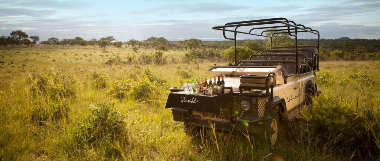 safari de luxe afrique du sud