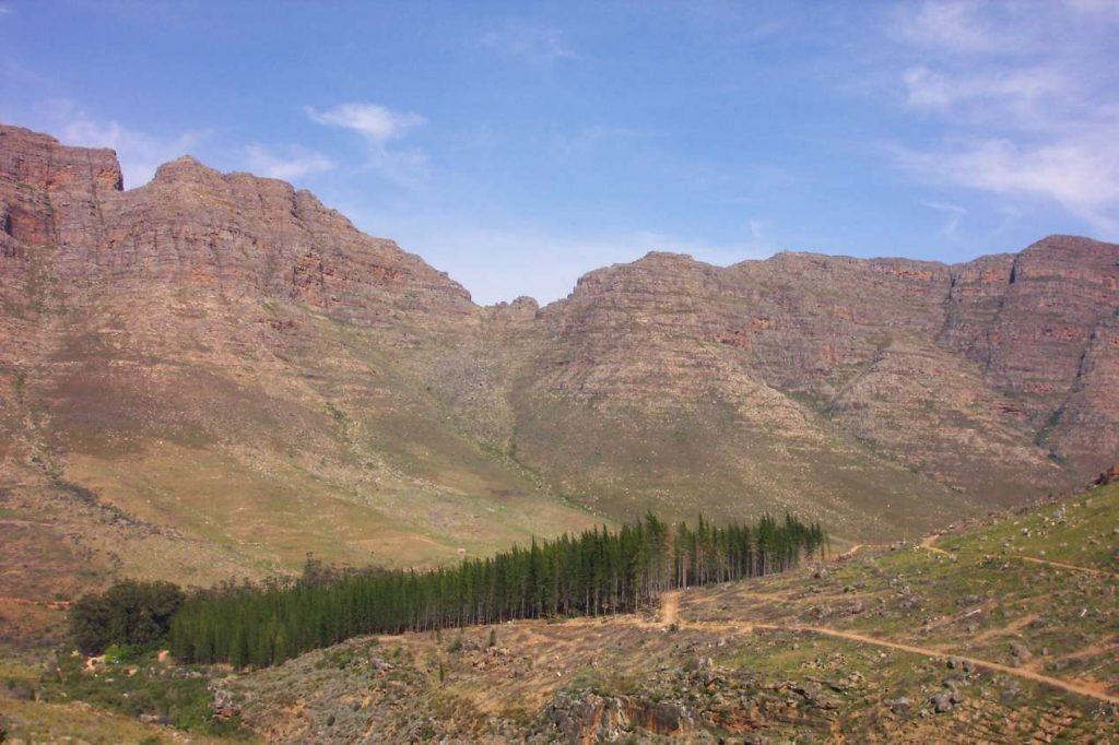 cederberg en Afrique du Sud