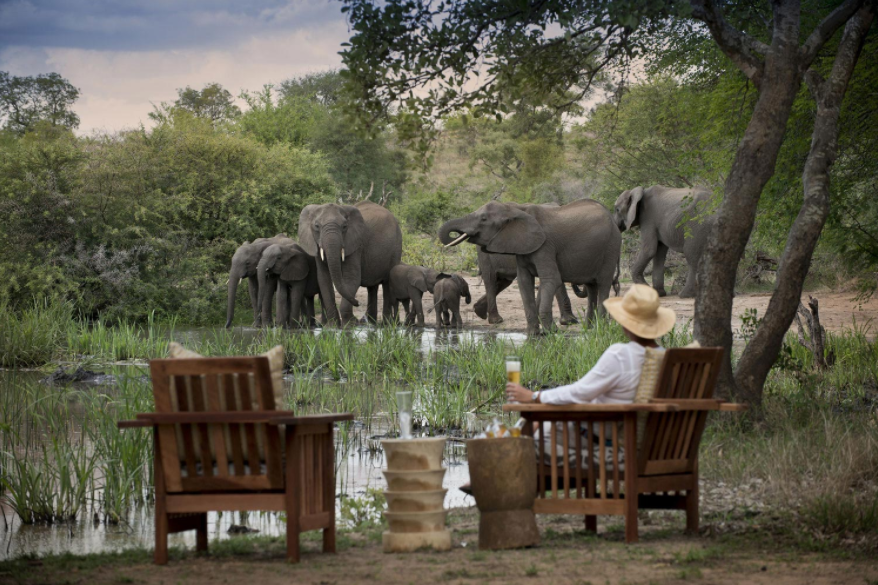 Tanda Tula Lodge