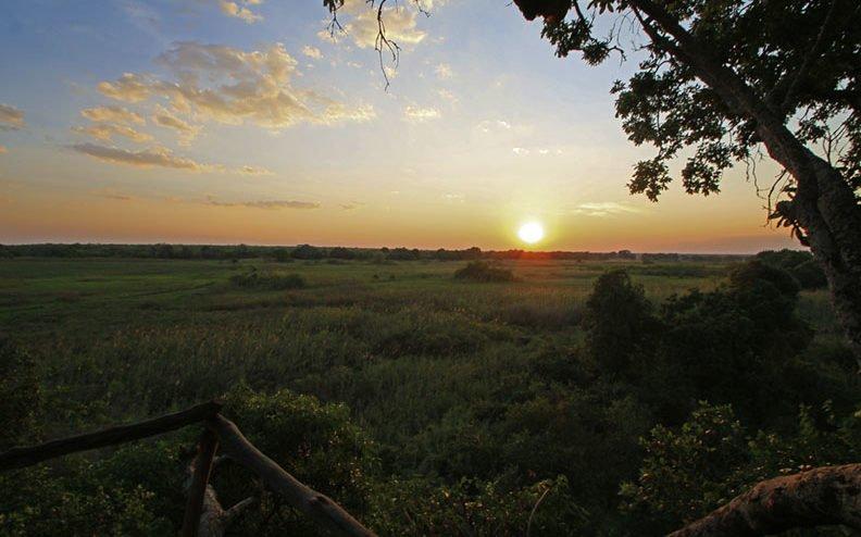Parc National de Kasanka