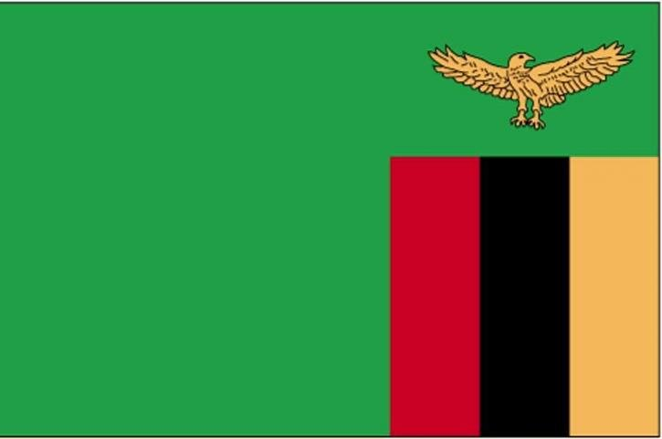 visa Zambie