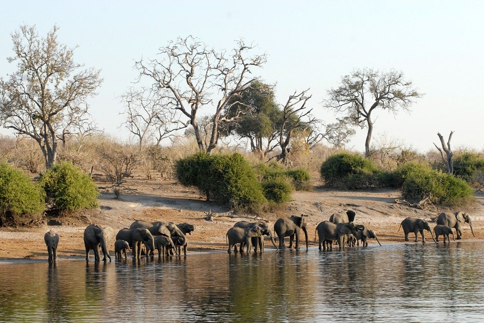 Imbabala National Park
